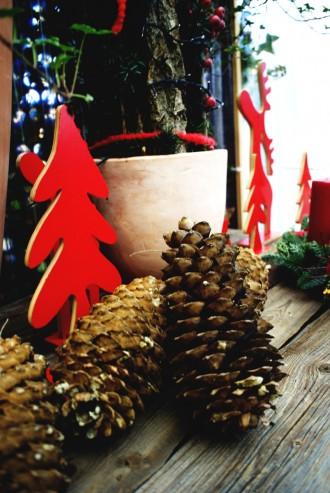 Blumenhaus_Christmas8