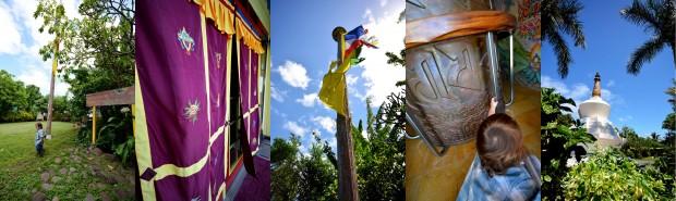 Maui_Dharma_Collage