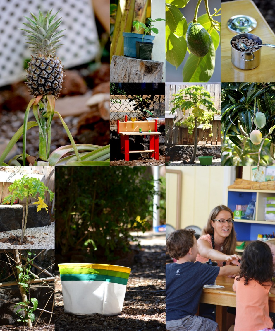 Collage_Little_Gardeners